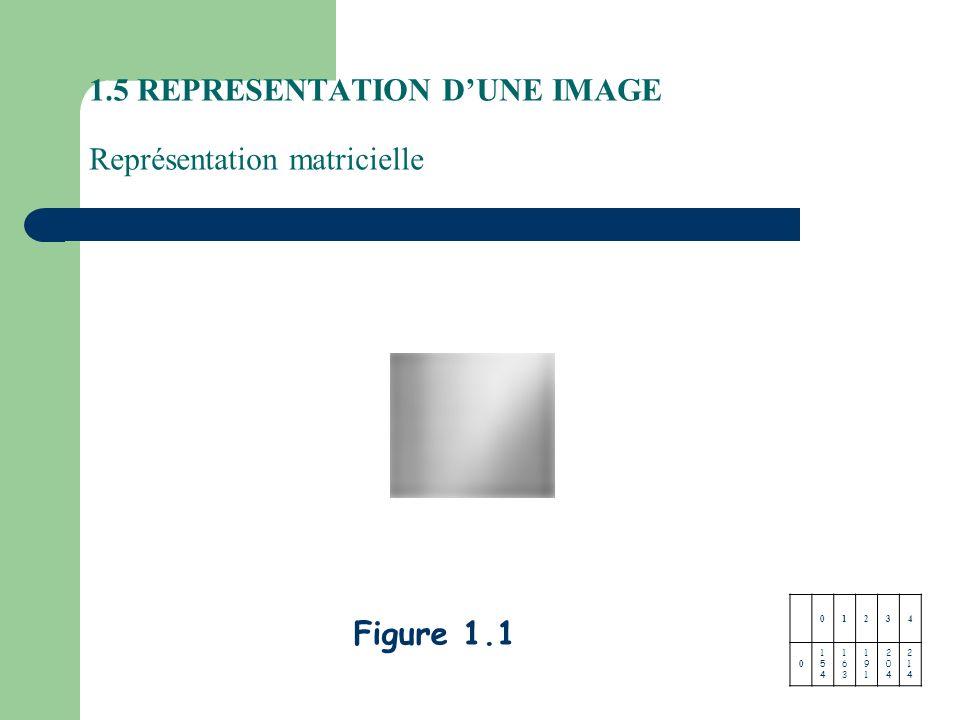 Figure 1.1 1.5 REPRESENTATION DUNE IMAGE Représentation matricielle 01234 0 154154 163163 191191 204204 214214