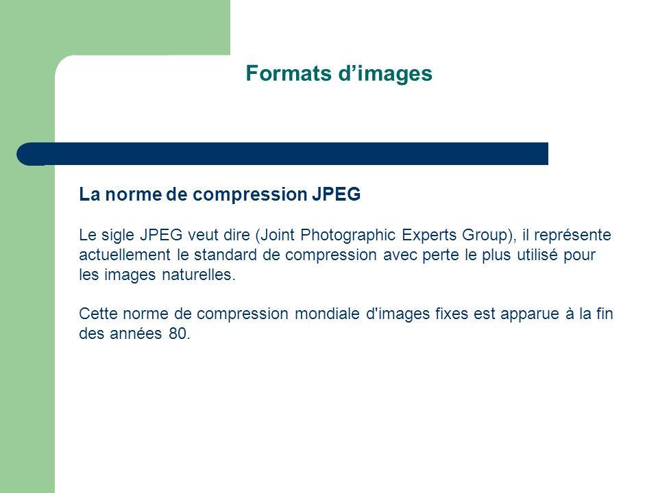 La norme de compression JPEG Le sigle JPEG veut dire (Joint Photographic Experts Group), il représente actuellement le standard de compression avec perte le plus utilisé pour les images naturelles.