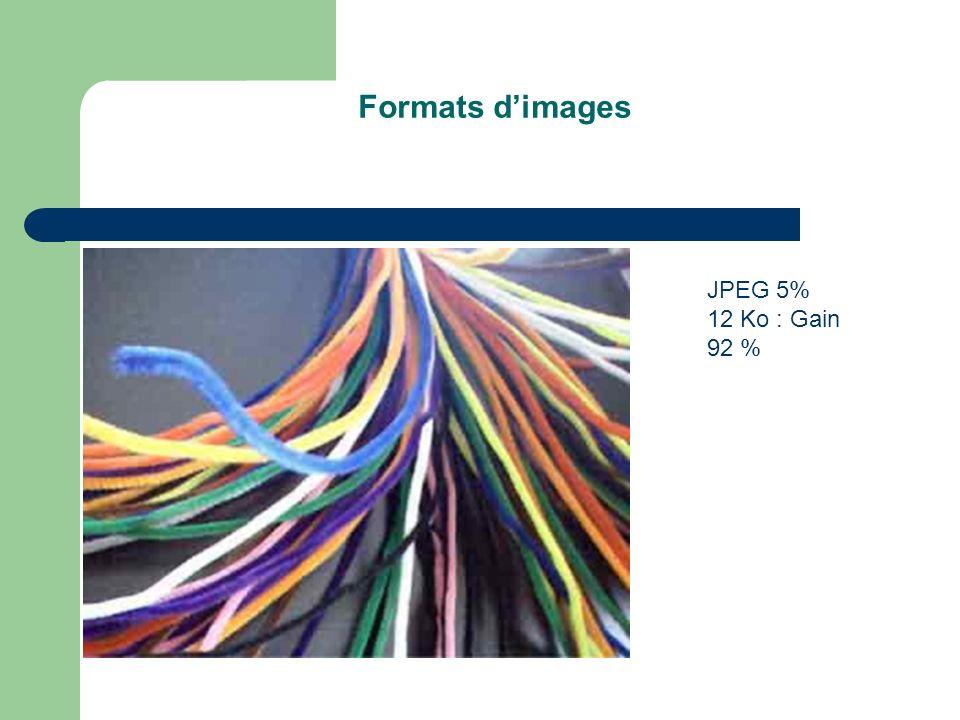 Formats dimages JPEG 5% 12 Ko : Gain 92 %