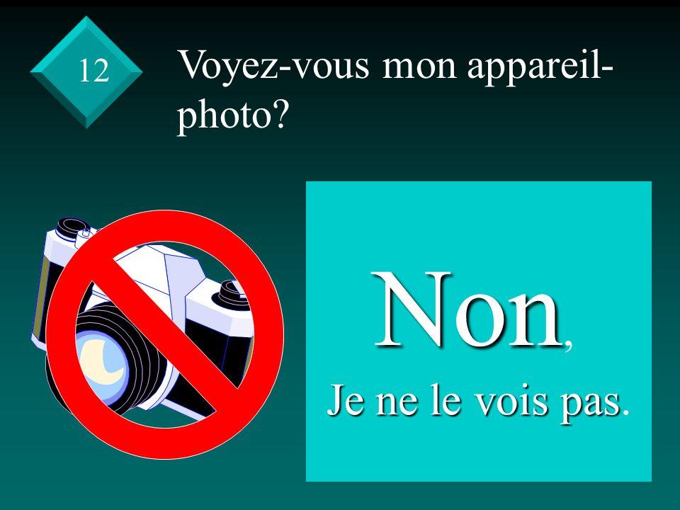 Voyez-vous mon appareil- photo Non, Je ne le vois pas Je ne le vois pas. 12
