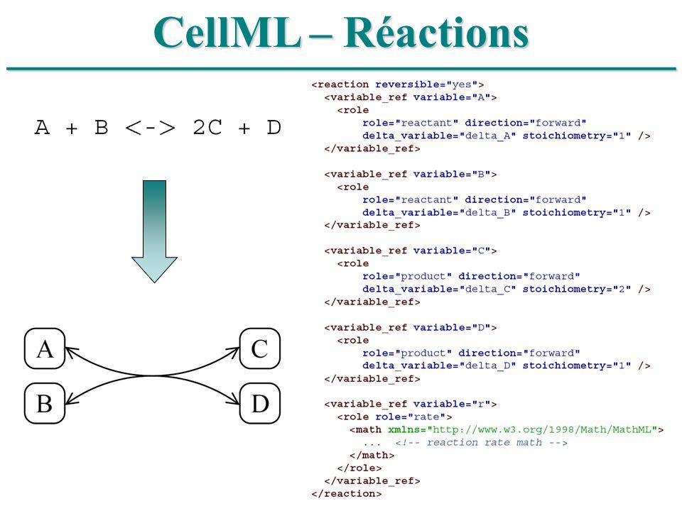 ______________________________ CellML – Réactions