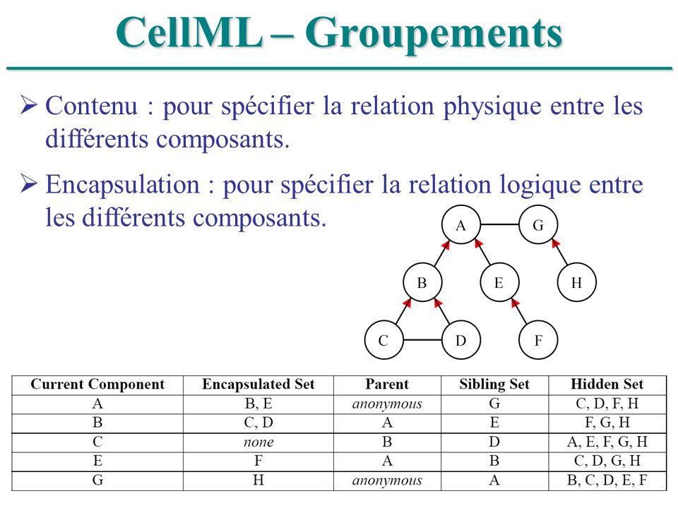 ______________________________ CellML – Groupements Contenu : pour spécifier la relation physique entre les différents composants. Encapsulation : pou