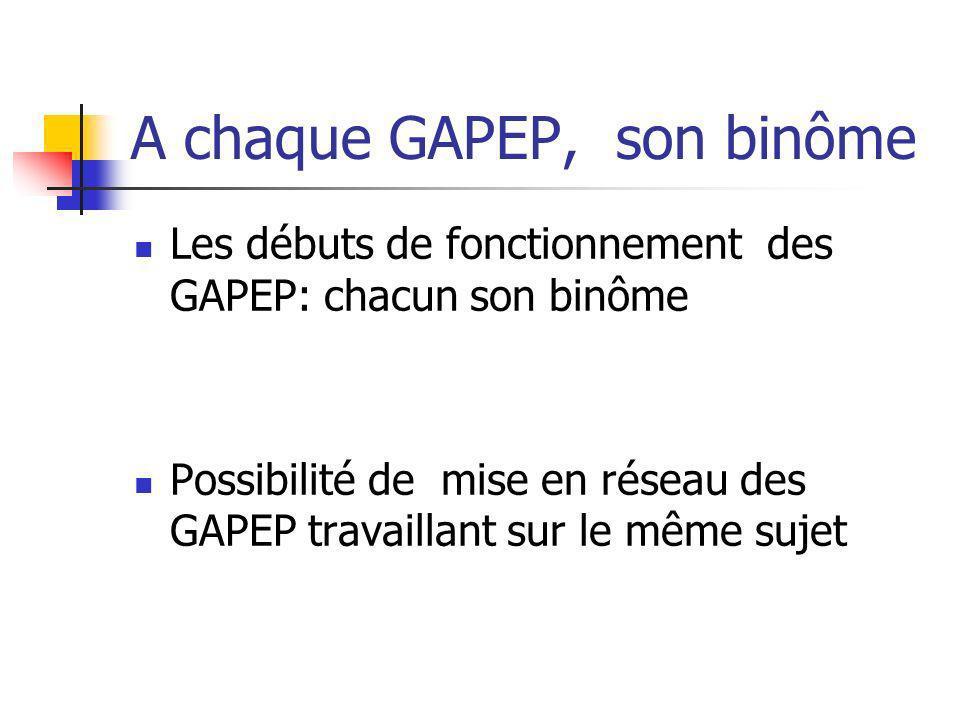 A chaque GAPEP, son binôme Les débuts de fonctionnement des GAPEP: chacun son binôme Possibilité de mise en réseau des GAPEP travaillant sur le même s