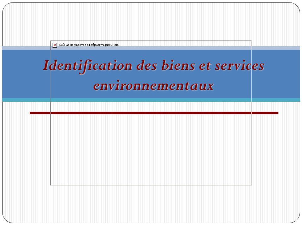 Identification des biens et services environnementaux