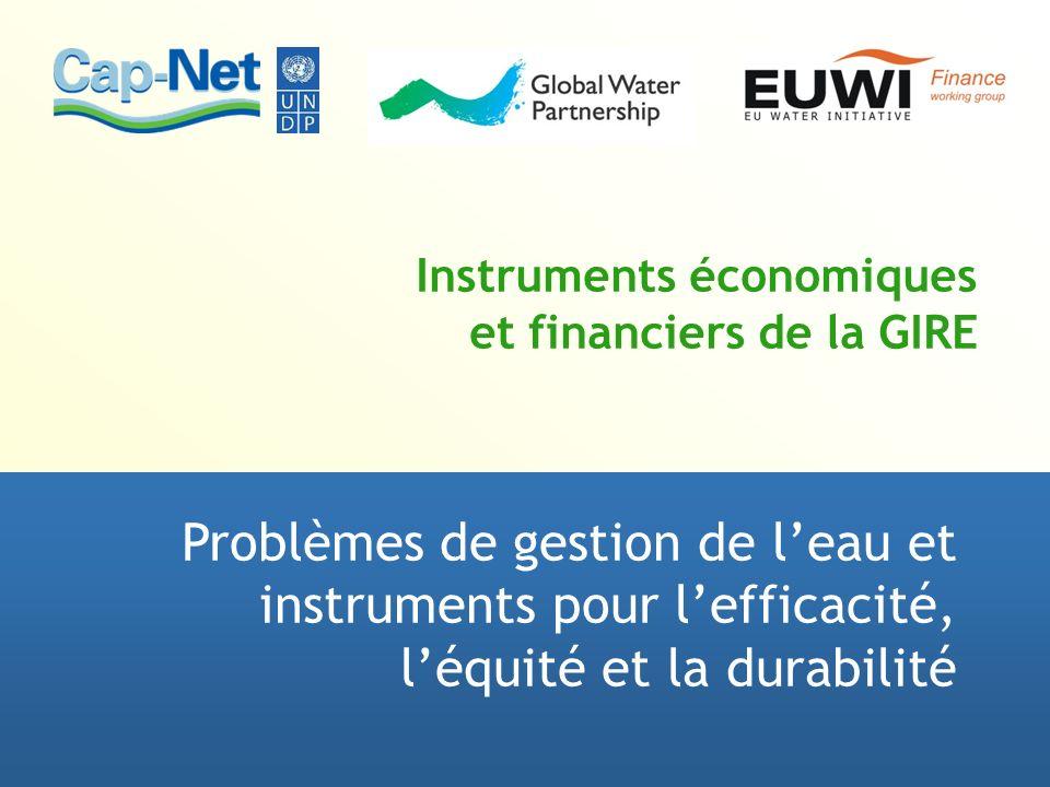 Instruments économiques et financiers de la GIRE Problèmes de gestion de leau et instruments pour lefficacité, léquité et la durabilité