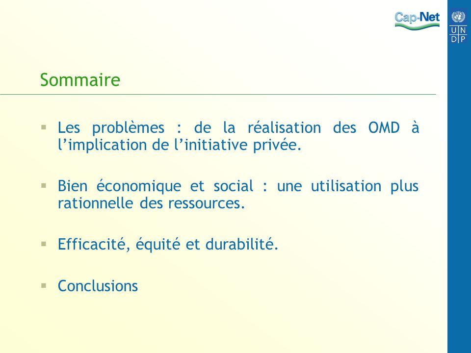 Sommaire Les problèmes : de la réalisation des OMD à limplication de linitiative privée. Bien économique et social : une utilisation plus rationnelle