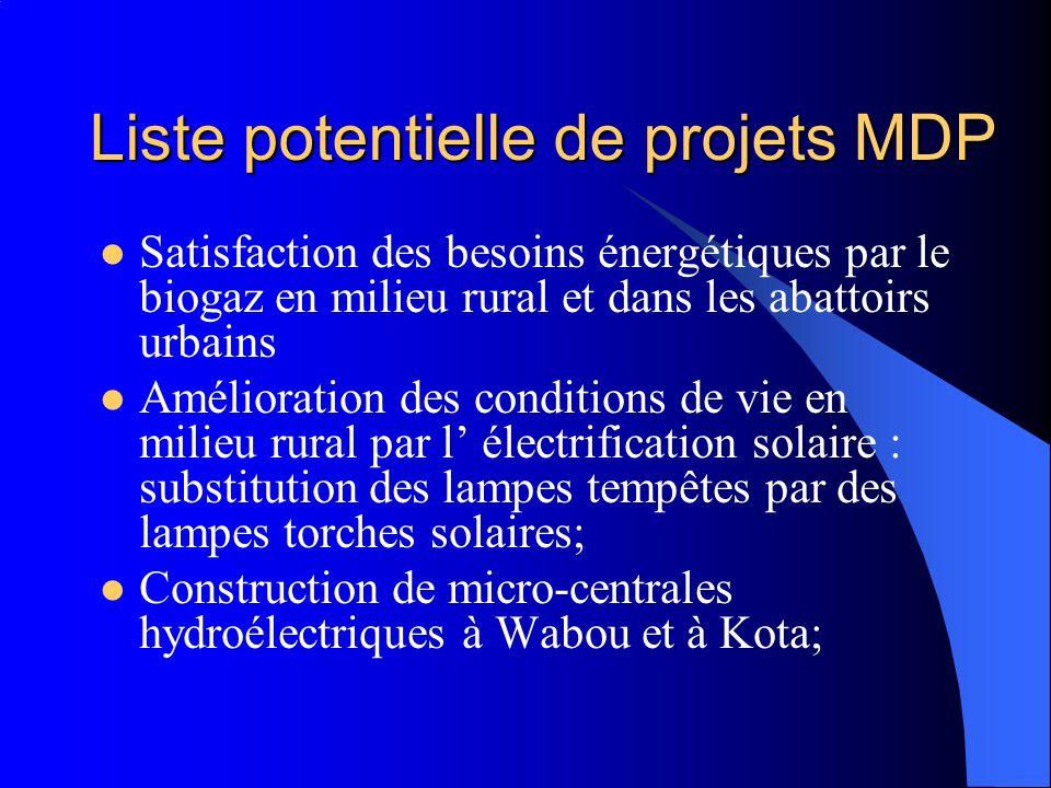 Liste potentielle de projets MDP Satisfaction des besoins énergétiques par le biogaz en milieu rural et dans les abattoirs urbains Amélioration des conditions de vie en milieu rural par l électrification solaire : substitution des lampes tempêtes par des lampes torches solaires; Construction de micro-centrales hydroélectriques à Wabou et à Kota;