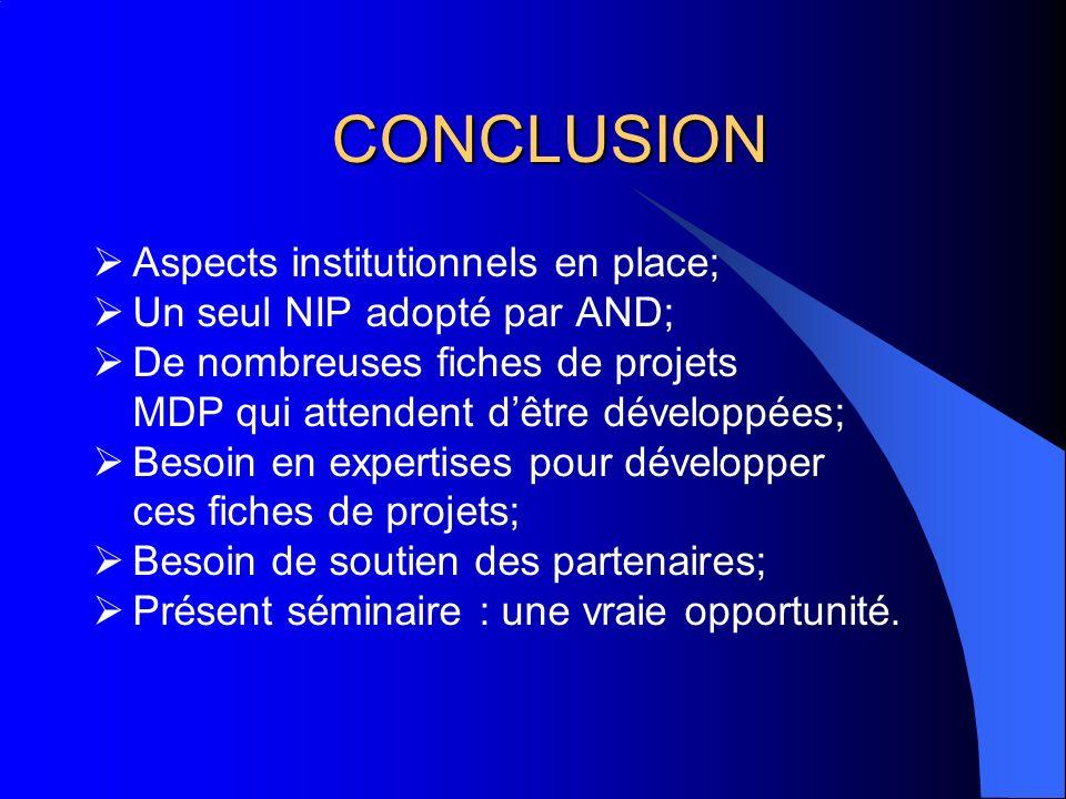 CONCLUSION Aspects institutionnels en place; Un seul NIP adopté par AND; De nombreuses fiches de projets MDP qui attendent dêtre développées; Besoin en expertises pour développer ces fiches de projets; Besoin de soutien des partenaires; Présent séminaire : une vraie opportunité.