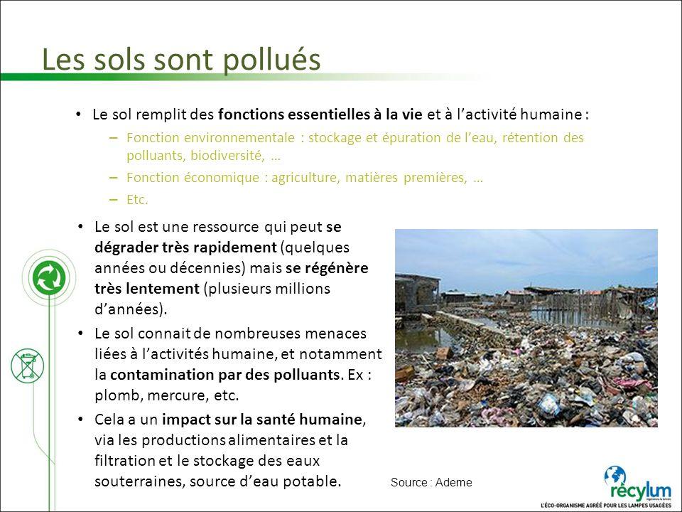 Les sols sont pollués Le sol remplit des fonctions essentielles à la vie et à lactivité humaine : – Fonction environnementale : stockage et épuration