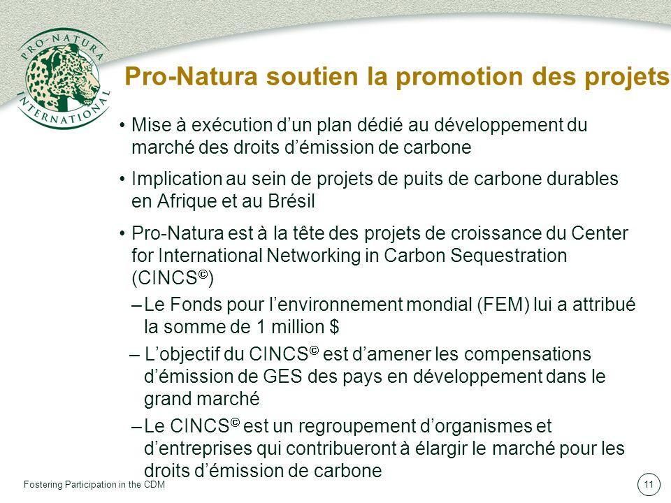 Fostering Participation in the CDM11 Pro-Natura soutien la promotion des projets Mise à exécution dun plan dédié au développement du marché des droits démission de carbone Implication au sein de projets de puits de carbone durables en Afrique et au Brésil Pro-Natura est à la tête des projets de croissance du Center for International Networking in Carbon Sequestration (CINCS ) –Le Fonds pour lenvironnement mondial (FEM) lui a attribué la somme de 1 million $ – Lobjectif du CINCS est damener les compensations démission de GES des pays en développement dans le grand marché –Le CINCS est un regroupement dorganismes et dentreprises qui contribueront à élargir le marché pour les droits démission de carbone