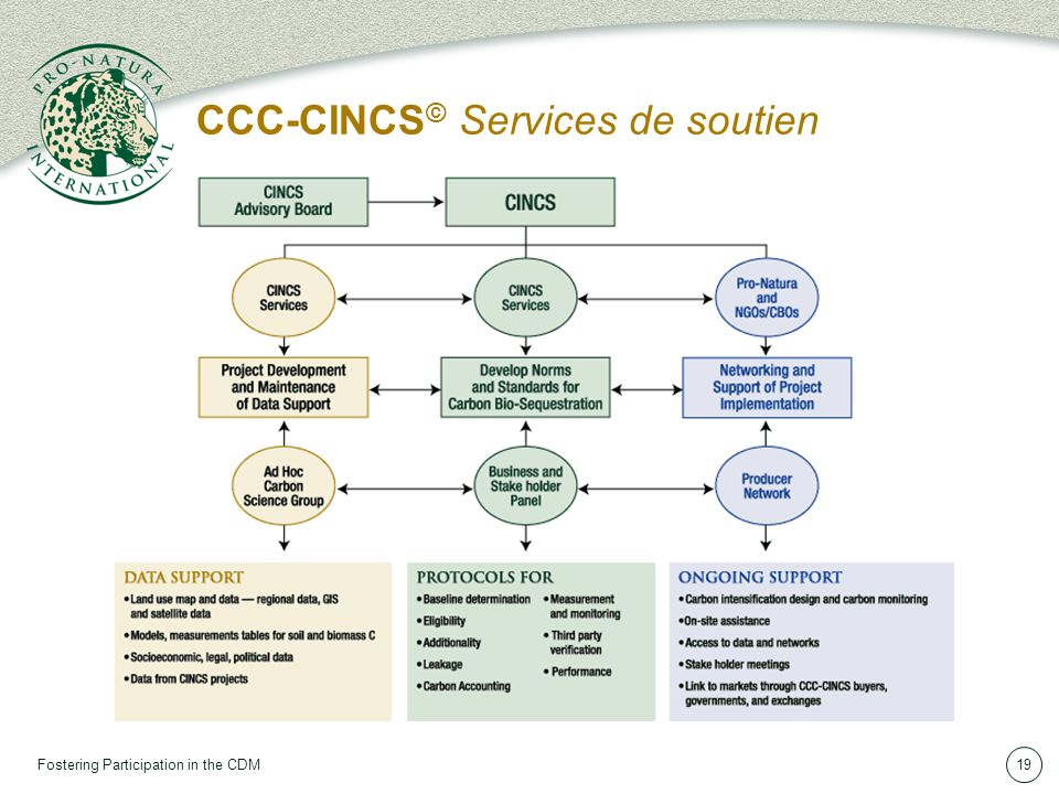 Fostering Participation in the CDM19 CCC-CINCS © Services de soutien