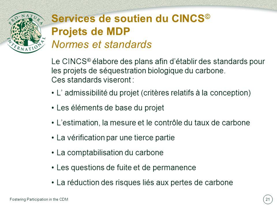 Fostering Participation in the CDM21 Services de soutien du CINCS © Projets de MDP Normes et standards Le CINCS élabore des plans afin détablir des standards pour les projets de séquestration biologique du carbone.