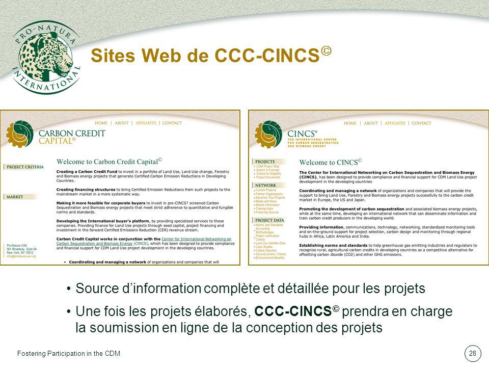 Fostering Participation in the CDM28 Sites Web de CCC-CINCS Source dinformation complète et détaillée pour les projets Une fois les projets élaborés, CCC-CINCS prendra en charge la soumission en ligne de la conception des projets