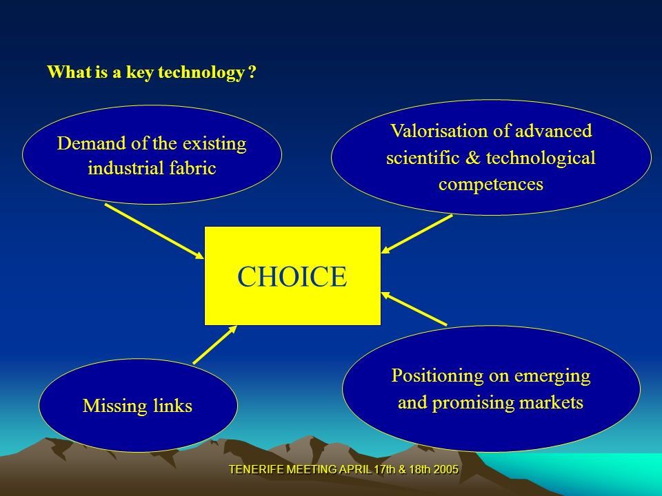 TENERIFE MEETING APRIL 17th & 18th 2005 Demand of the existing industrial fabric Valorisation of advanced scientific & technological competences Positioning on emerging and promising markets CHOICE Missing links What is a key technology ?