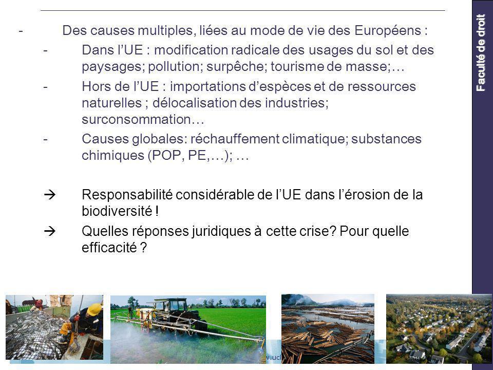 UCL - Faculté de droit - www.uclouvain.be/drtAoût 2010 Faculté de droit -Des causes multiples, liées au mode de vie des Européens : -Dans lUE : modification radicale des usages du sol et des paysages; pollution; surpêche; tourisme de masse;… -Hors de lUE : importations despèces et de ressources naturelles ; délocalisation des industries; surconsommation… -Causes globales: réchauffement climatique; substances chimiques (POP, PE,…); … Responsabilité considérable de lUE dans lérosion de la biodiversité .