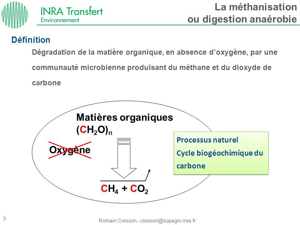 Romain Cresson - cresson@supagro.inra.fr 3 Processus naturel Cycle biogéochimique du carbone Processus naturel Cycle biogéochimique du carbone Matière
