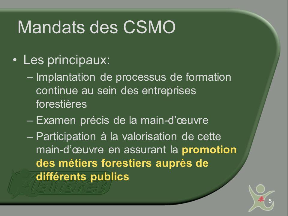 5 Mandats des CSMO Les principaux: –Implantation de processus de formation continue au sein des entreprises forestières –Examen précis de la main-dœuvre –Participation à la valorisation de cette main-dœuvre en assurant la promotion des métiers forestiers auprès de différents publics