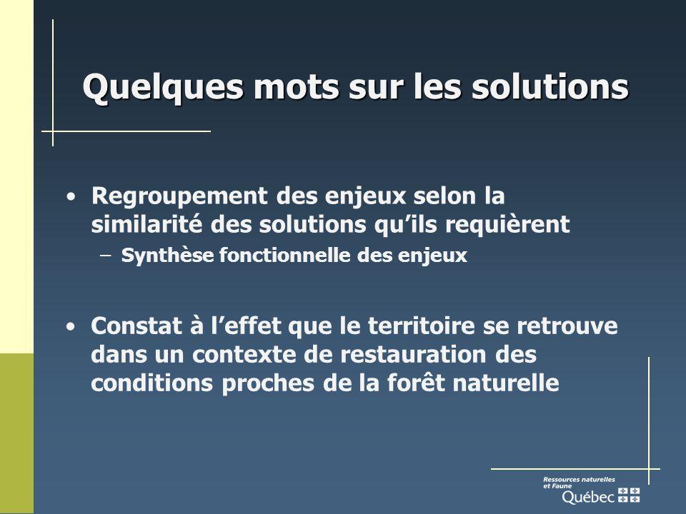 Quelques mots sur les solutions Regroupement des enjeux selon la similarité des solutions quils requièrent –Synthèse fonctionnelle des enjeux Constat à leffet que le territoire se retrouve dans un contexte de restauration des conditions proches de la forêt naturelle