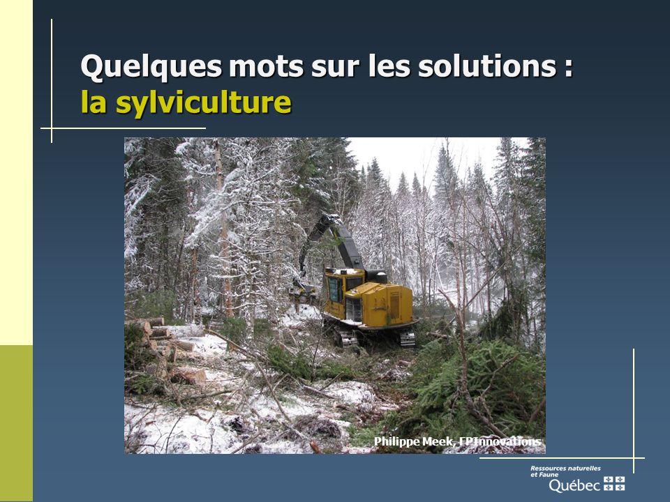 Quelques mots sur les solutions : la sylviculture Philippe Meek, FPInnovations