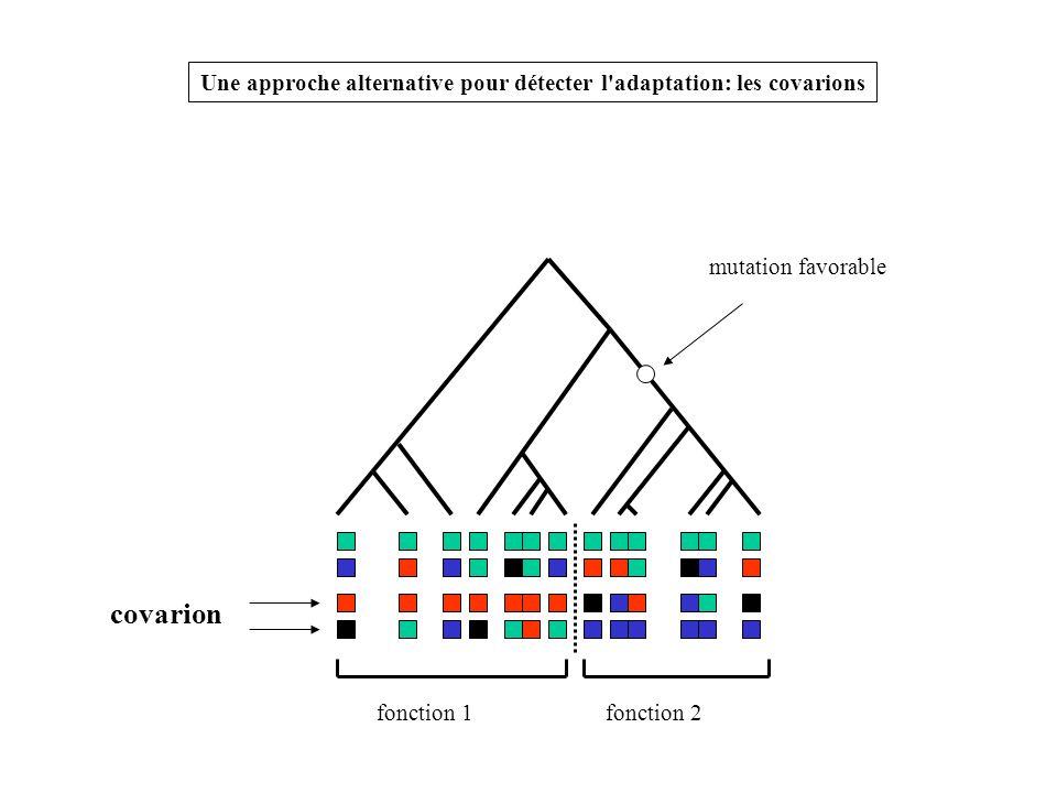 mutation favorable fonction 1fonction 2 covarion Une approche alternative pour détecter l'adaptation: les covarions