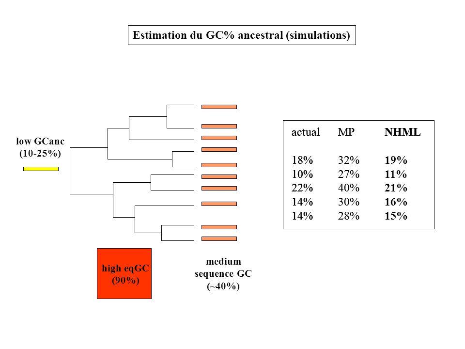 actualMPNHML 18% 10% 22% 14% low GCanc (10-25%) high eqGC (90%) medium sequence GC (~40%) Estimation du GC% ancestral (simulations) actualMPNHML 18%32