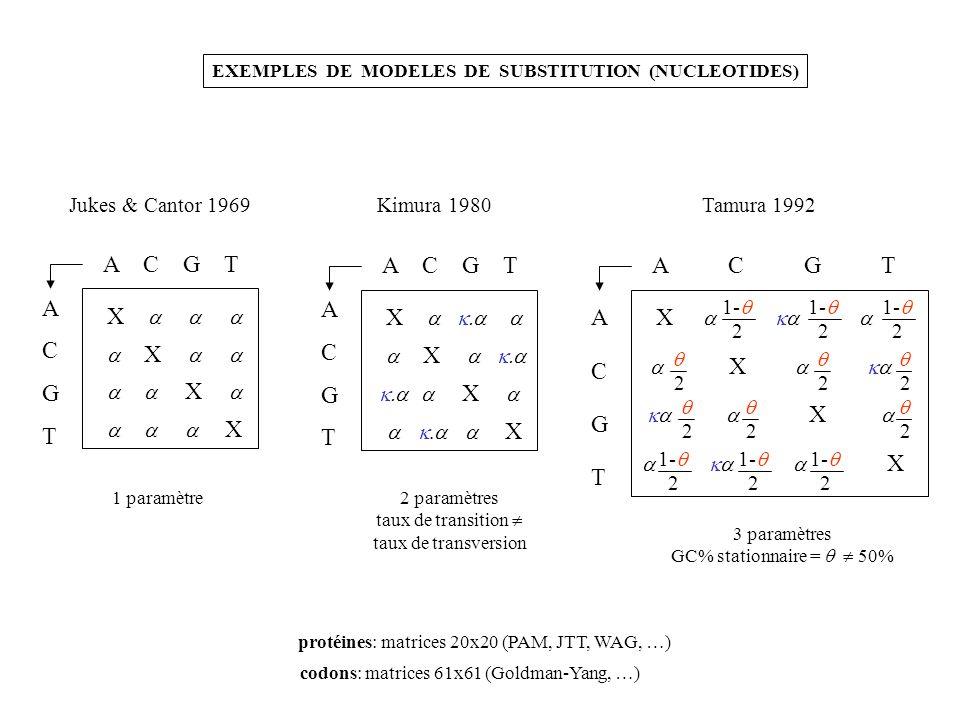EXEMPLES DE MODELES DE SUBSTITUTION (NUCLEOTIDES) Jukes & Cantor 1969 A C G T A C G T X X X X 1 paramètre Kimura 1980 A C G T A C G T X X X X 2 paramè