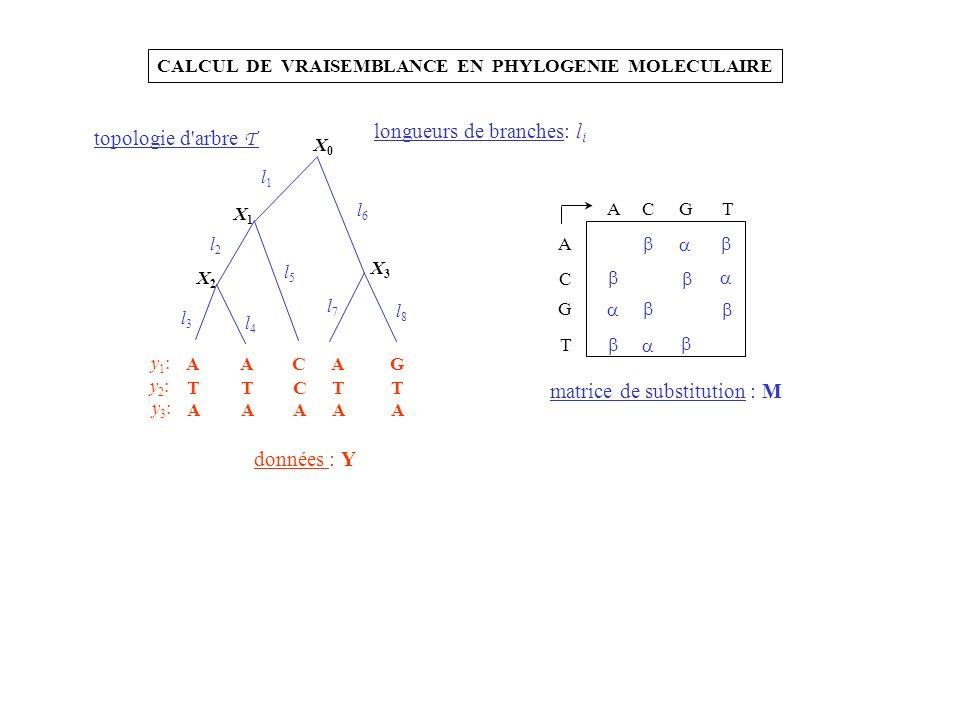 A C G T ACGT matrice de substitution : M X0X0 X1X1 X2X2 X3X3 l1l1 l2l2 l3l3 l4l4 l5l5 l6l6 l7l7 l8l8 AACAG TTCTT AAAAA y1:y1: y2:y2: y3:y3: données :