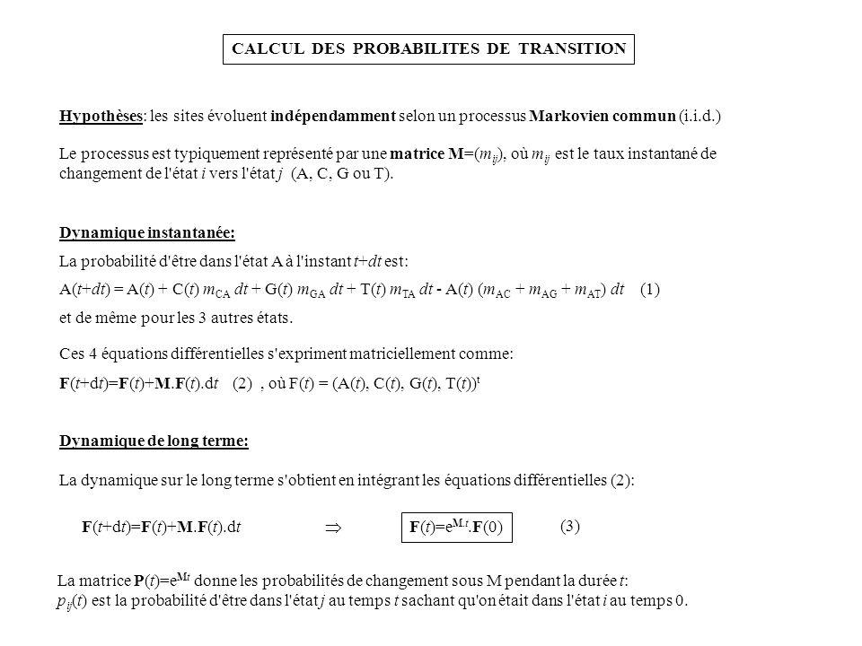CALCUL DES PROBABILITES DE TRANSITION Hypothèses: les sites évoluent indépendamment selon un processus Markovien commun (i.i.d.) Le processus est typi