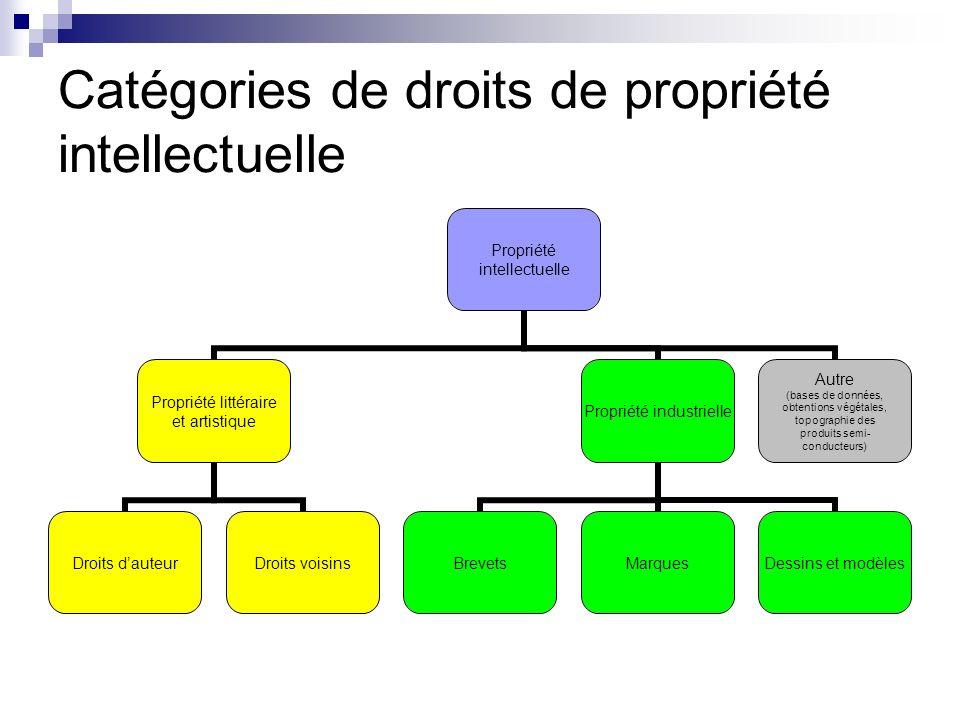 Catégories de droits de propriété intellectuelle Propriété intellectuelle Propriété littéraire et artistique Droits dauteurDroits voisins Propriété in
