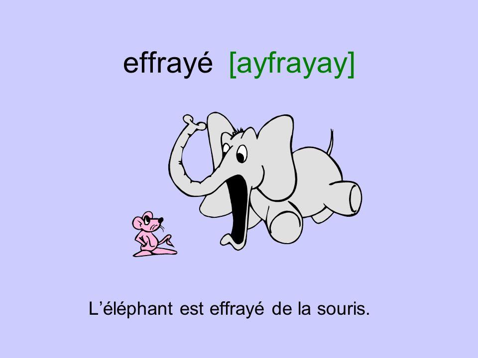 effrayé [ayfrayay] Léléphant est effrayé de la souris.