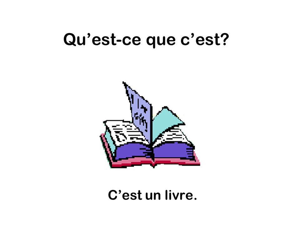Quest-ce que cest Cest un livre.