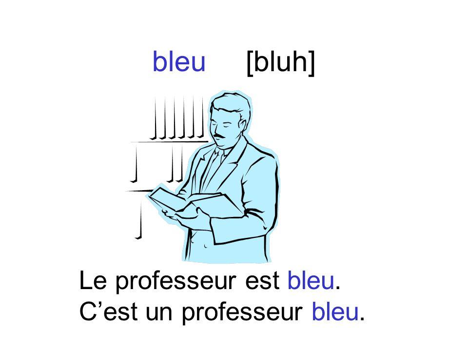 bleu[bluh] Le professeur est bleu. Cest un professeur bleu.