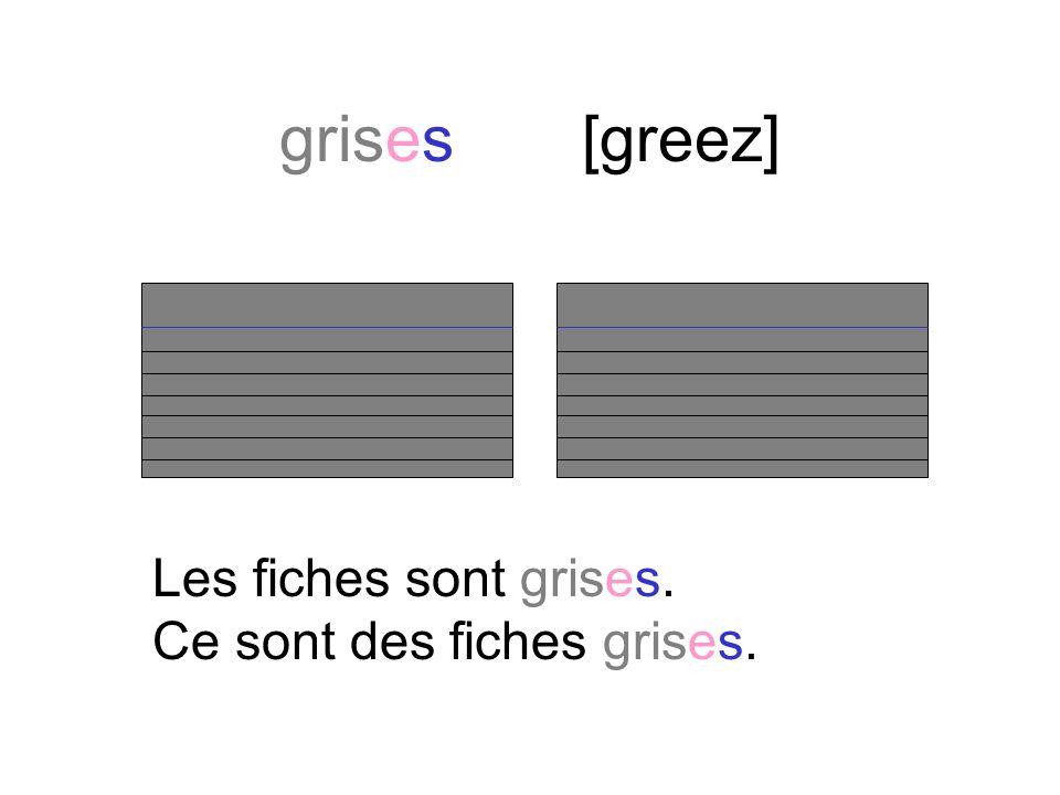 gris[gree] Les fichiers sont gris. Ce sont des fichiers gris.
