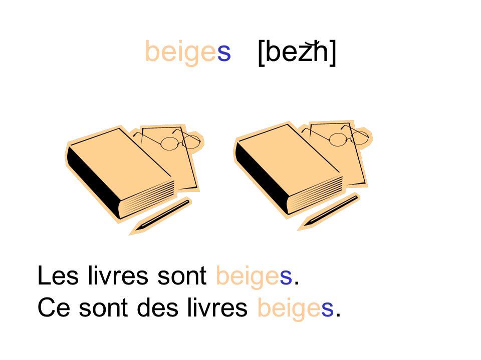 beige [bezh] La corbeille à papier est beige. Cest une corbeille à papier beige.