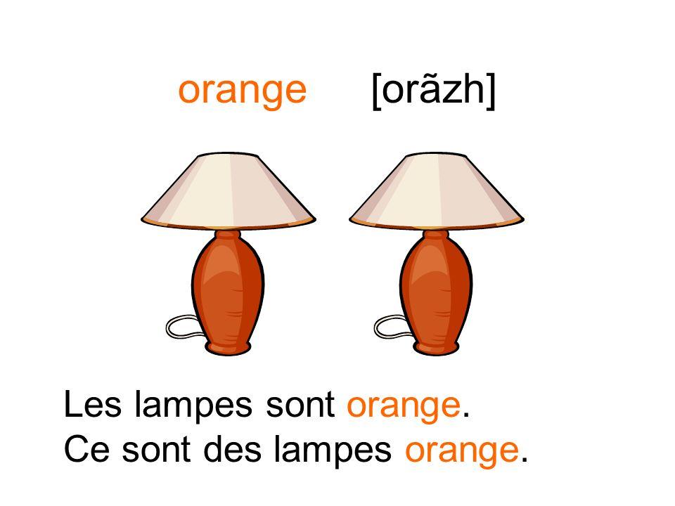 orange[orãzh] Les livres sont orange. Ce sont des livres orange.