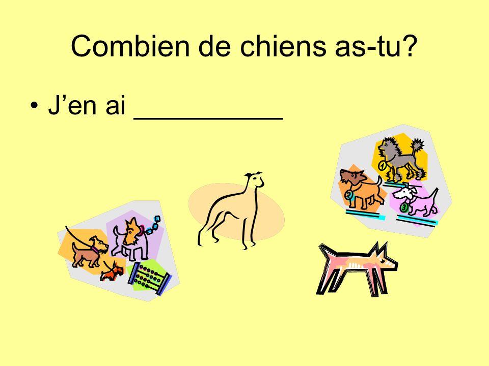 Combien de chiens as-tu Jen ai __________
