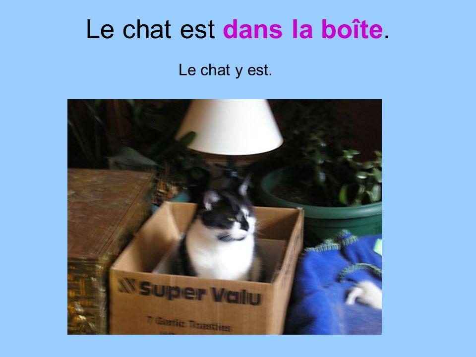Le chat est dans la boîte. Le chat y est.