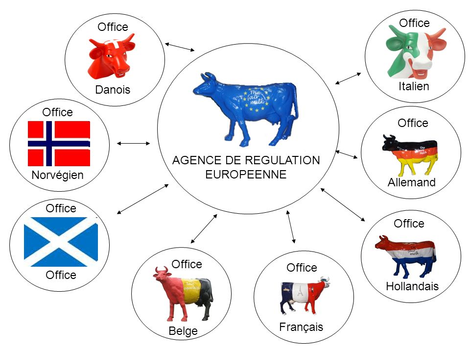 AGENCE DE REGULATION EUROPEENNE Italien Office Allemand Office Hollandais Office Français Office Belge Office Norvégien Office Danois