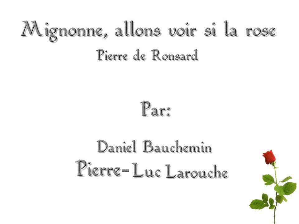 Auteur Le poème Champs lexicaux Métaphores Rimes Registres de langue