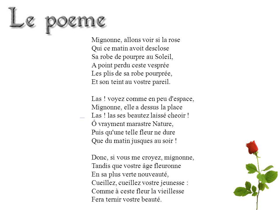Amour Amoureux Cœur Fleur Passion Homme Femme Les champs lexicaux sont des ensembles de mots relié à un même thème.
