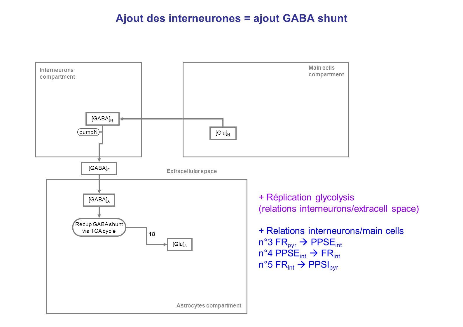 Ajout des interneurones = ajout GABA shunt [GABA] E [Glu] N [GABA] N pumpN [GABA] A Main cells compartment Interneurons compartment Astrocytes compart