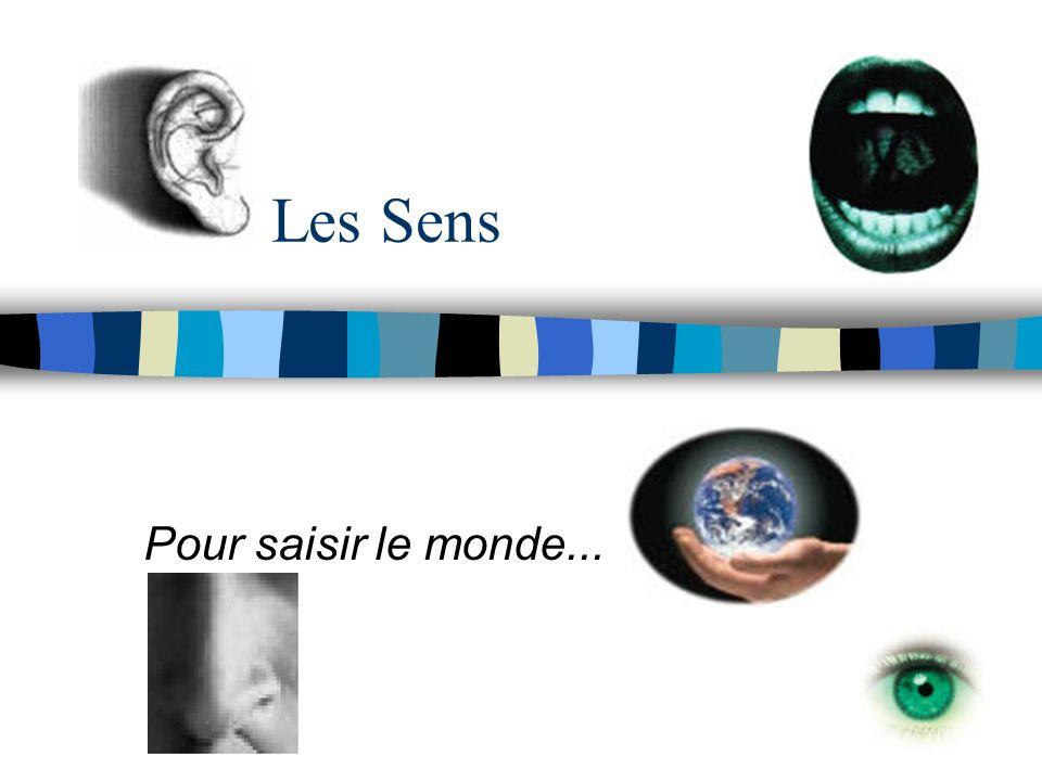 La vue (suite) n Vision binoculaire et illusions doptique (http://artic.ca-besancon.fr/svt/svtbis/act_ped/svt_clg/troisieme/Brevet00/Brevet2000/cerveau.gif) Au niveau des voies nerveuses optiques, seules les fibres nerveuses issues des moitiés internes des deux rétines subissent un croisement...