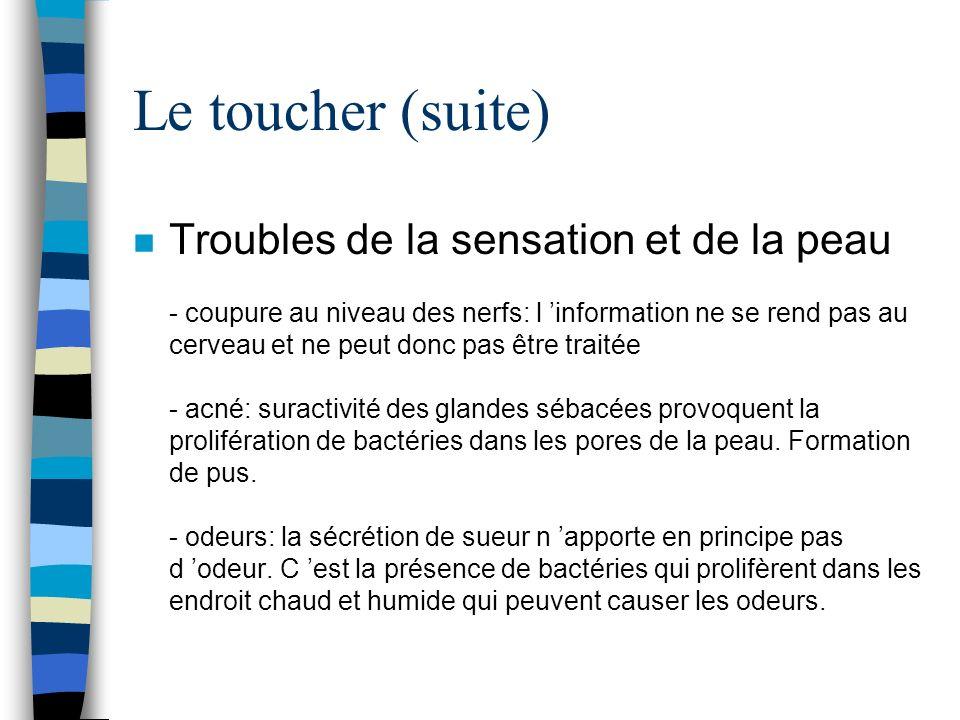 Le toucher (suite) n Troubles de la sensation et de la peau - coupure au niveau des nerfs: l information ne se rend pas au cerveau et ne peut donc pas