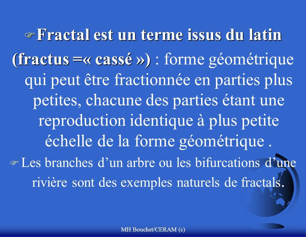 MH Bouchet/CERAM (c) F Fractal est un terme issus du latin (fractus =« cassé ») (fractus =« cassé ») : forme géométrique qui peut être fractionnée en