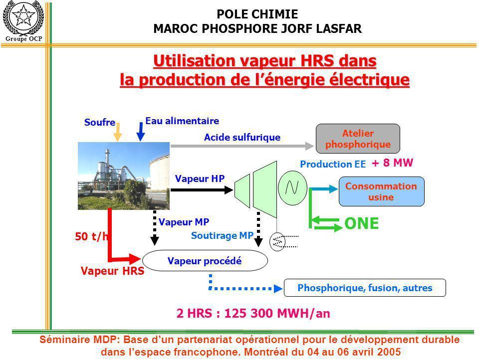 POLE CHIMIE MAROC PHOSPHORE JORF LASFAR Groupe OCP Quantité de vapeur supplémentaire générée : 50 t/h par unité Gain en énergie électrique : 125 300 MWH/an pour deux unités Léquivalent de cette énergie sera réduit de la production de lONE Le CO 2 équivalent évité est de : 93 000 T CO 2 /an Réduction du rejet dans la mer de : 23 200 000 m 3 /an Répartition du coût du projet : environ 60 % Devise et 40 % Dirhams Durée de réalisation : 13 mois Date de mise en service 1 re unité : 2 e trimestre 2006 Date de mise en service 2 e unité : 1 er trimestre 2007 Apport de lHRS, Impact environnemental et planification de réalisation Séminaire MDP: Base dun partenariat opérationnel pour le développement durable dans lespace francophone.