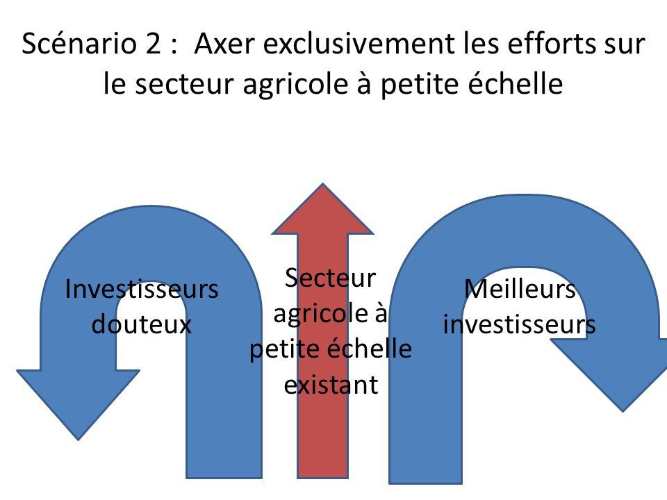 Scénario 3 : Meilleurs investisseurs et meilleurs modèles d entreprises - qui augmentent le flux de trésorerie dans les économies rurales avec un minimum de dommage Secteur agricole à petite échelle existant Meilleurs investisseurs Investisseurs douteux