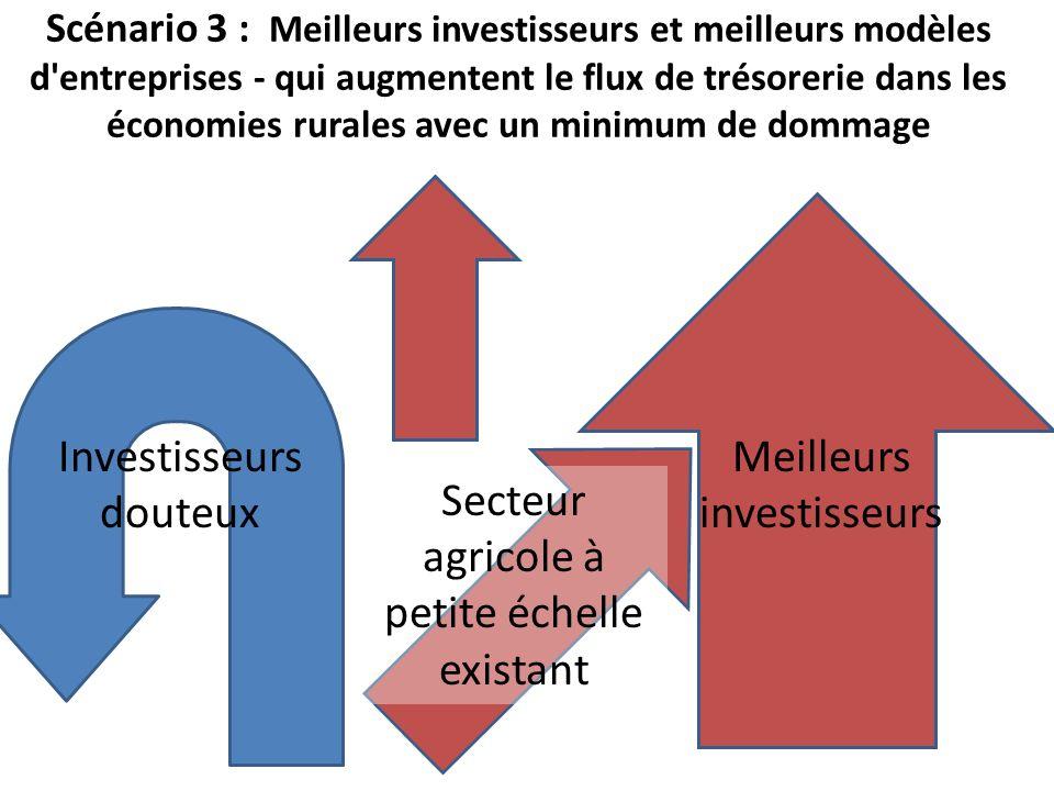 Scénario 3 : Meilleurs investisseurs et meilleurs modèles d'entreprises - qui augmentent le flux de trésorerie dans les économies rurales avec un mini
