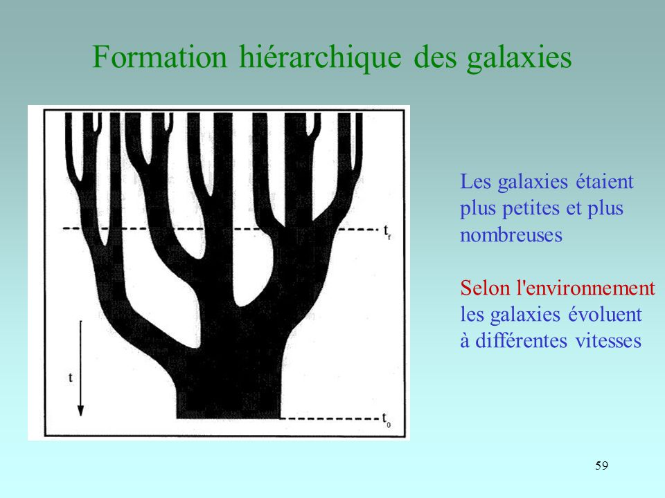 59 Formation hiérarchique des galaxies Les galaxies étaient plus petites et plus nombreuses Selon l'environnement les galaxies évoluent à différentes