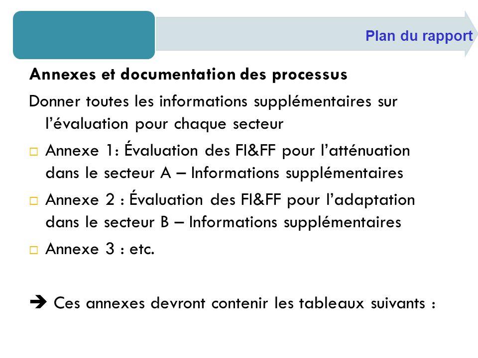 Annexes et documentation des processus Donner toutes les informations supplémentaires sur lévaluation pour chaque secteur Annexe 1: Évaluation des FI&FF pour latténuation dans le secteur A – Informations supplémentaires Annexe 2 : Évaluation des FI&FF pour ladaptation dans le secteur B – Informations supplémentaires Annexe 3 : etc.