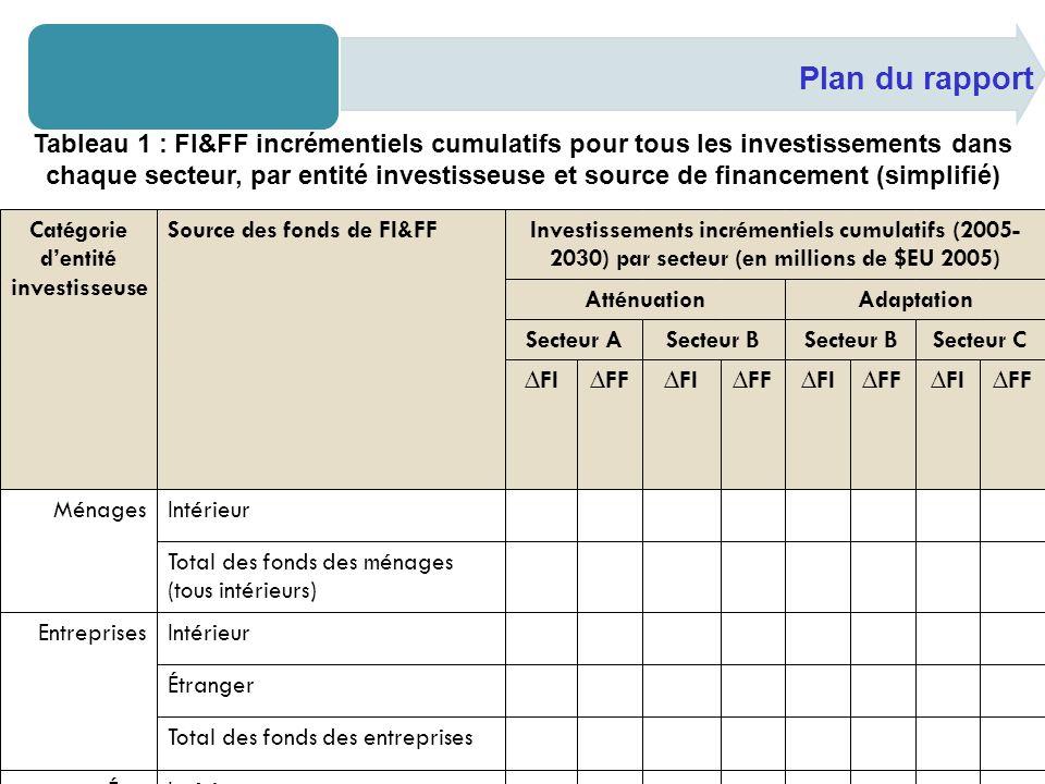 Plan du rapport Tableau 8 : Estimations des FI & FF incrémentiels annuels, par type dinvestissement (simplifié) AnnéeEstimations des FI, FF et O&M incrémentiels annuels (en millions de $EU 2005) Investissement Type 1 Investissement Type 2 Investissement Type 3 Investissement Type 4 Tous types dinvestissemt FIFF O&M FIFF O&M FIFF O&M FIFF O&M FIFF O&M 2005 2006 2007 2008 2009 … 2028 2029 2030